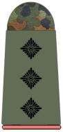 Captain (Cpt)