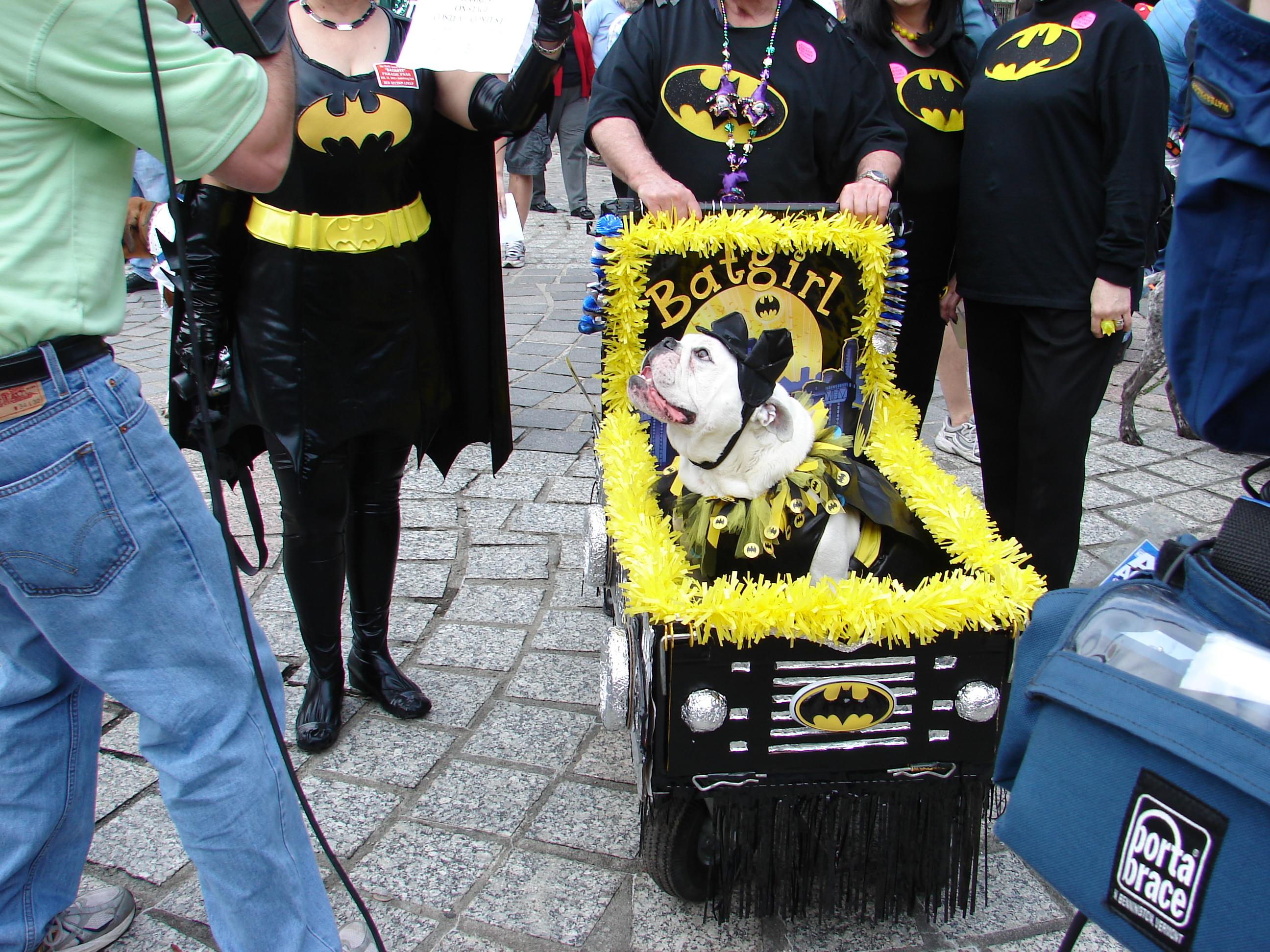 File:Barkus 2009 - New Orleans Dog Parade 02.jpg