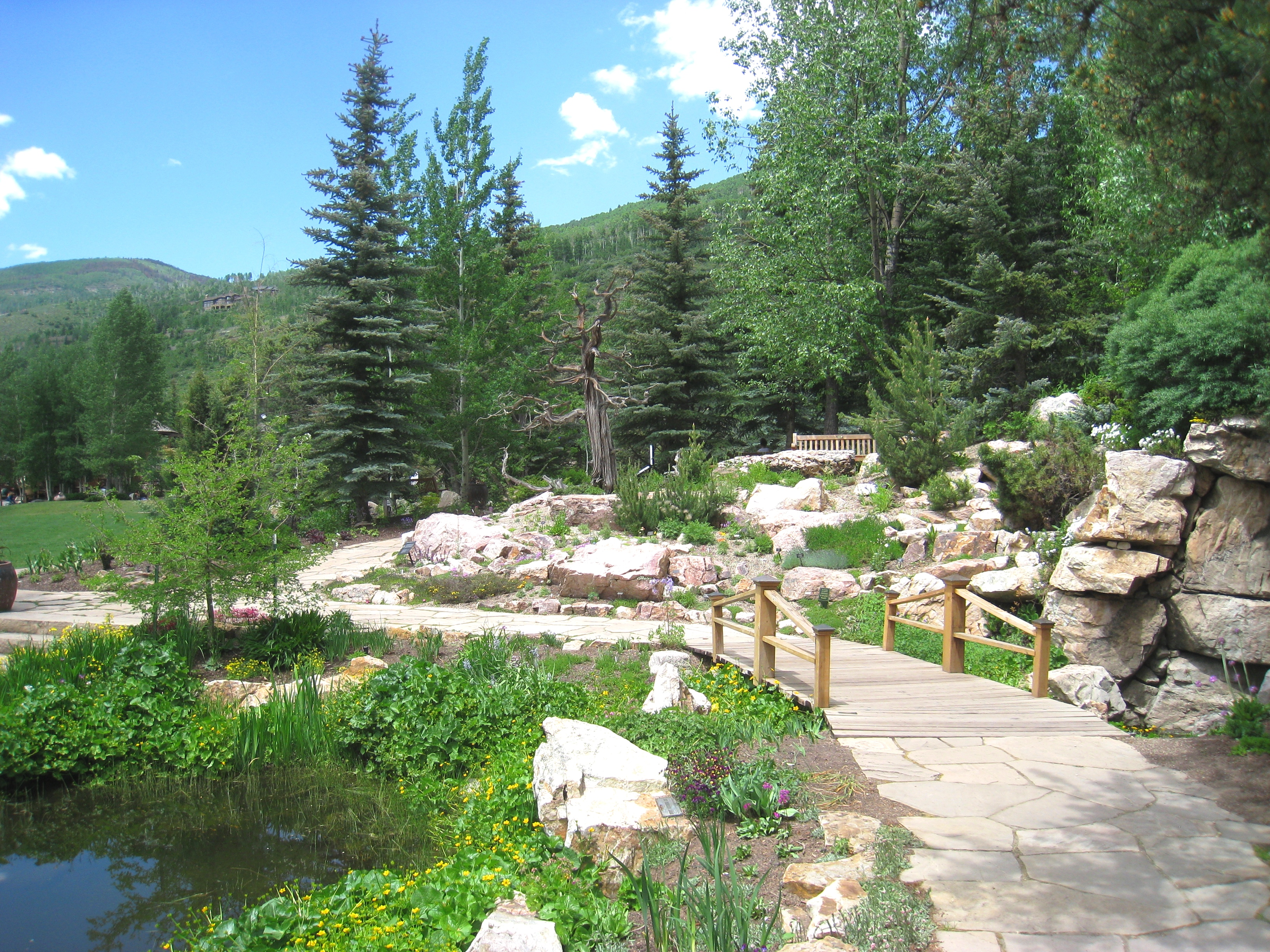 Superieur File:Betty Ford Alpine Gardens, Vail, CO   Bridge
