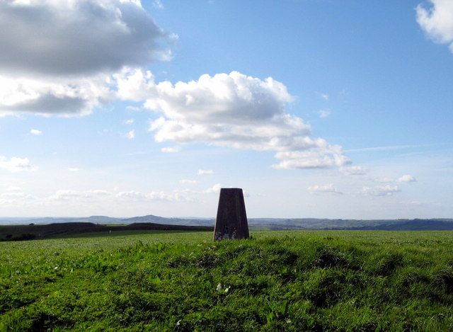 Blue triangulation pillar - Eggardon Hill - geograph.org.uk - 1284545