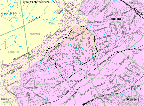 Census Bureau map of New Providence, New Jersey