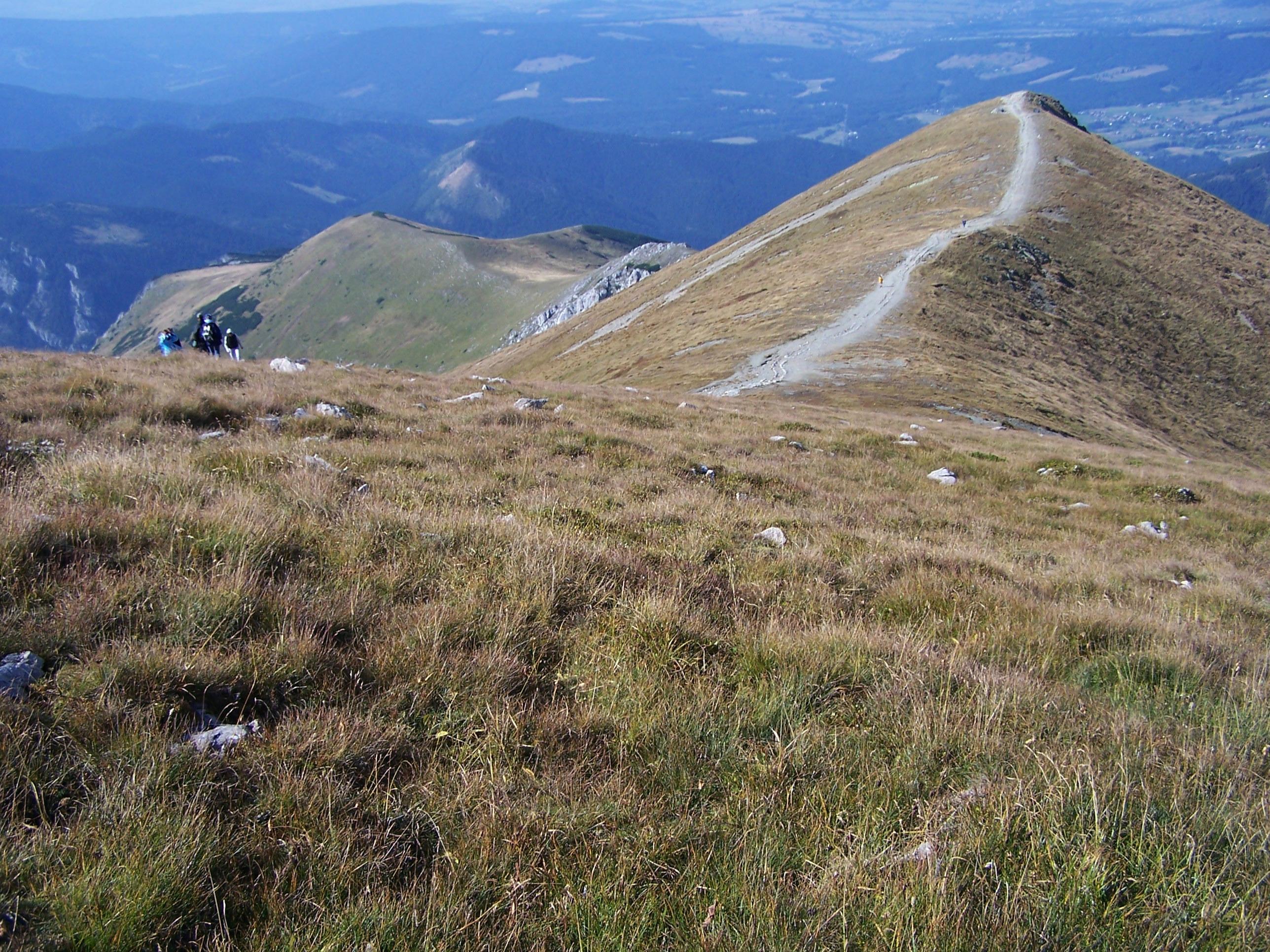 Twardy Upłaz (Wikimedia)