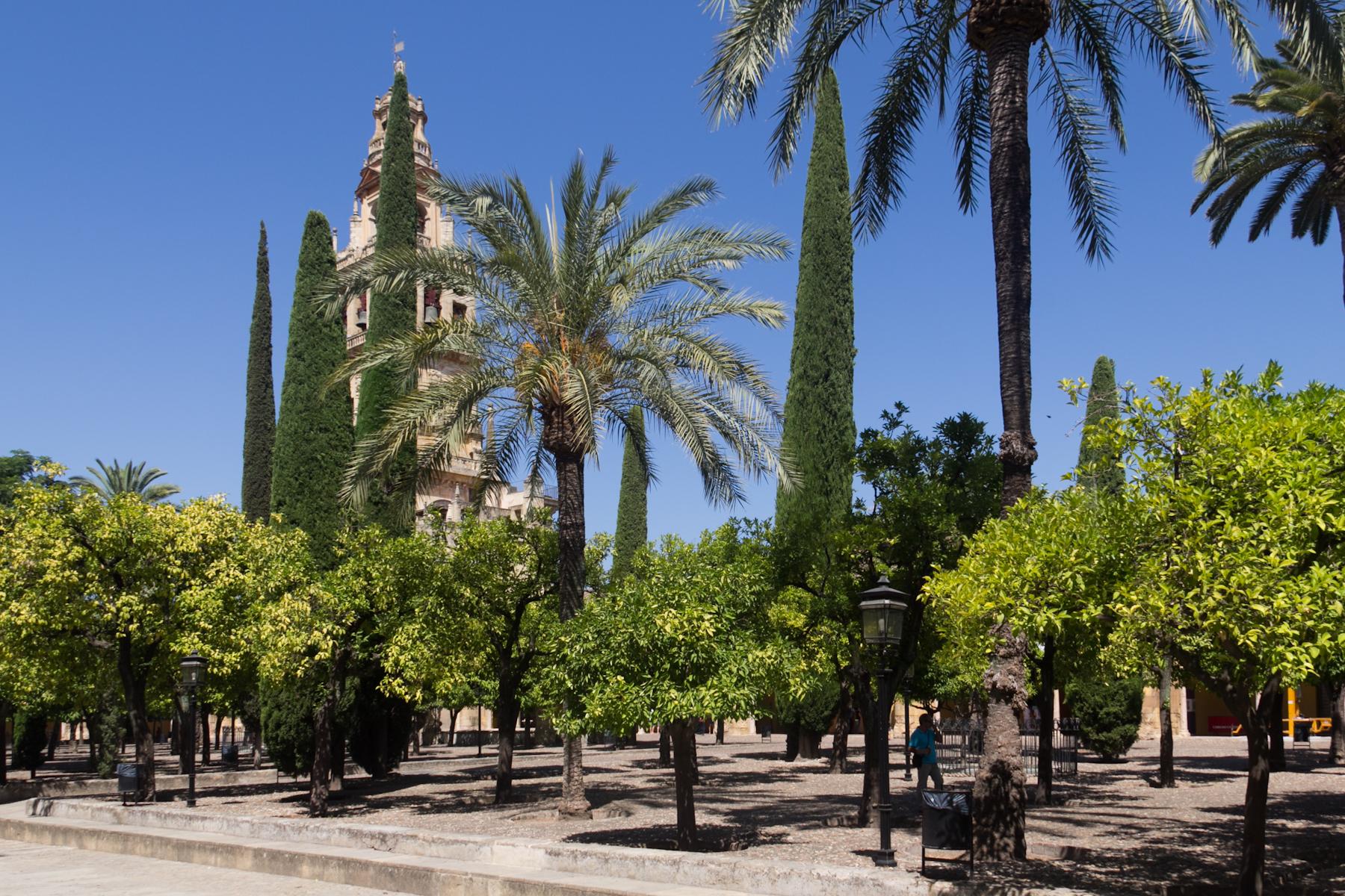 Archivo cordoba july 13 2015 img 3965 21477066614 jpg - Hotel los patios almeria ...