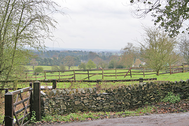 Countryside at Swithland Wood - geograph.org.uk - 155027