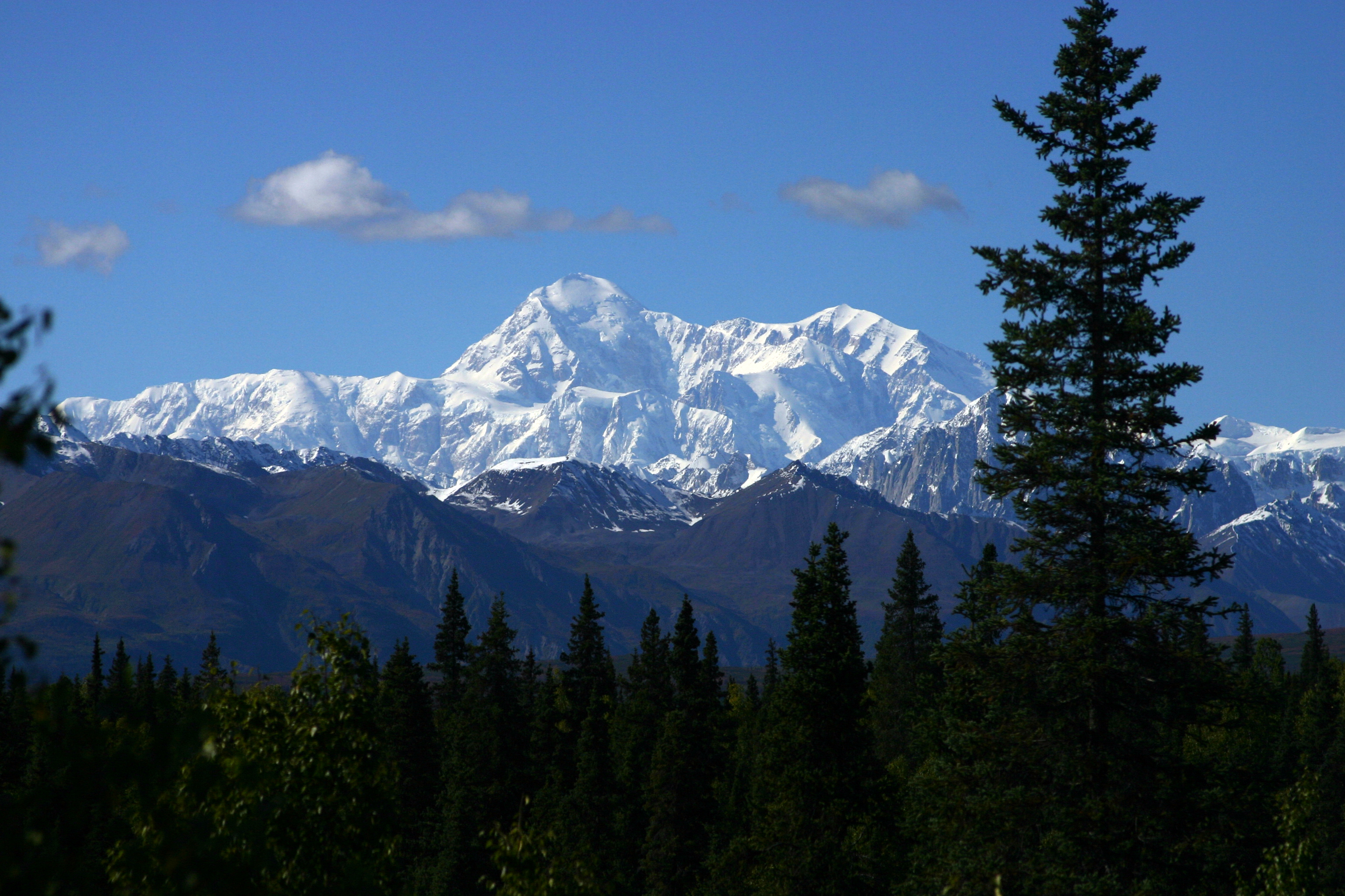 denali national park black dating site Gifts from the interior of alaska  denali national park and preserve encompasses 6 million  i was doing the online dating game when i came across his.