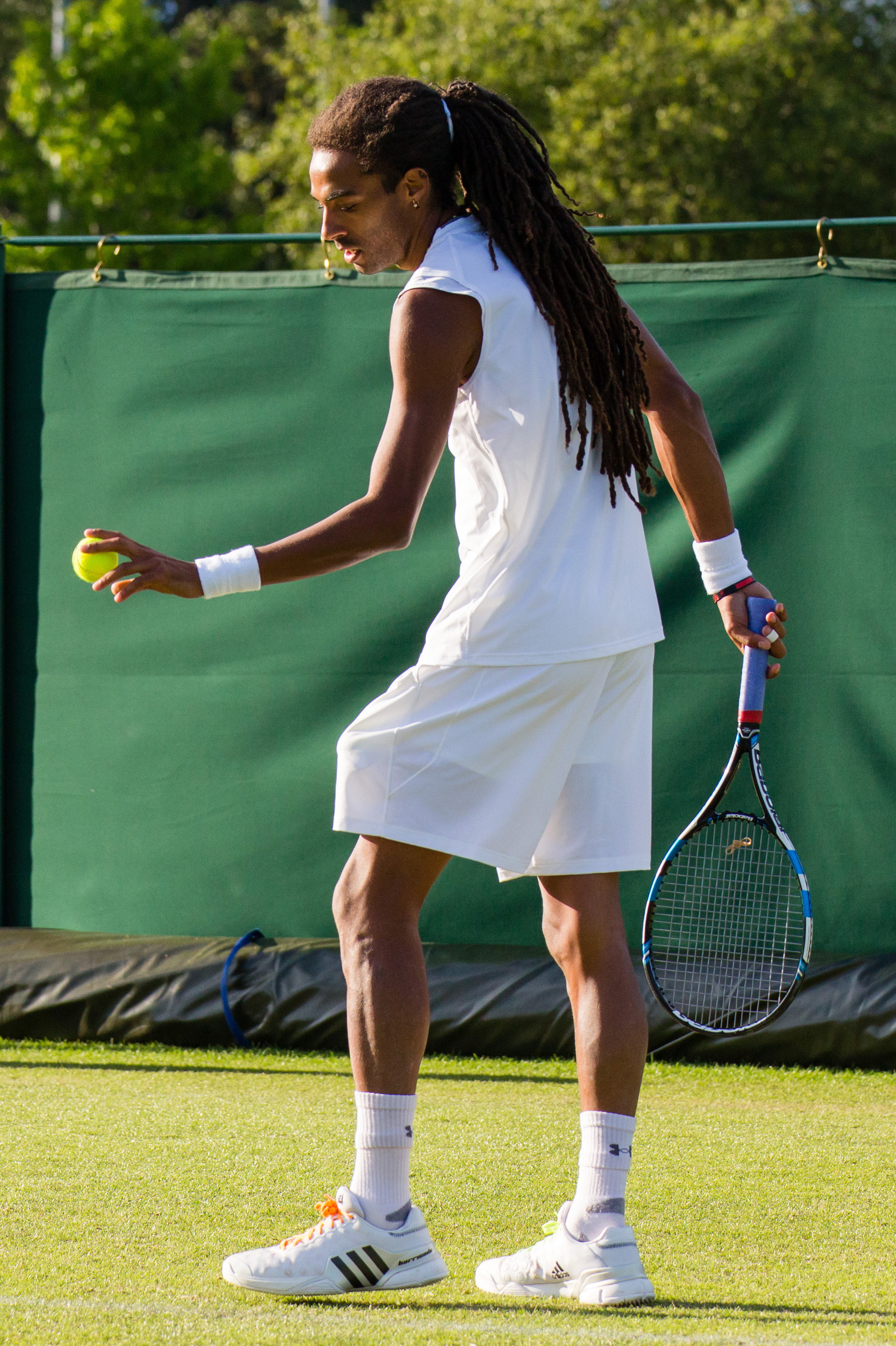Dustin Brown Wimbledon