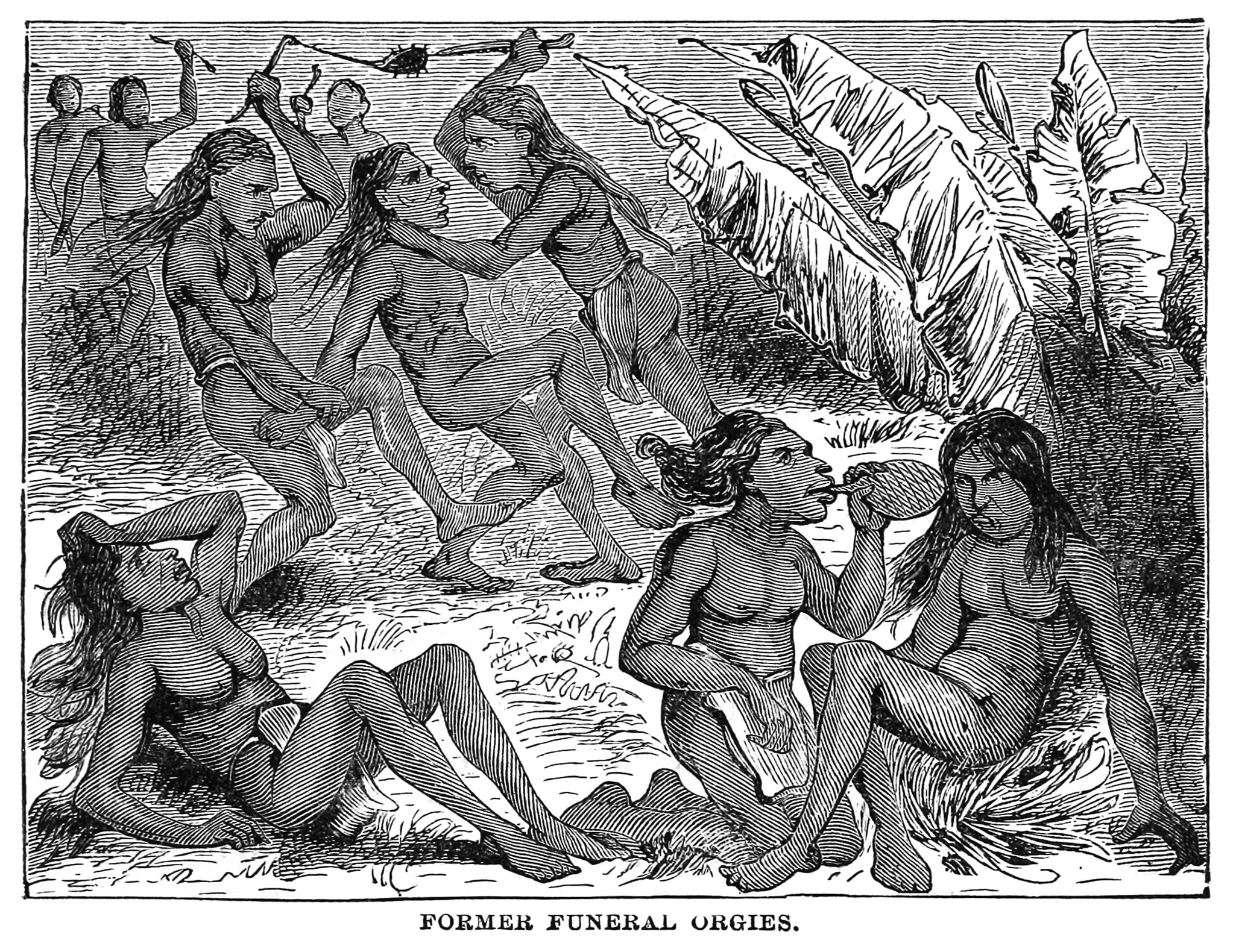 Wikimedia commons orgy