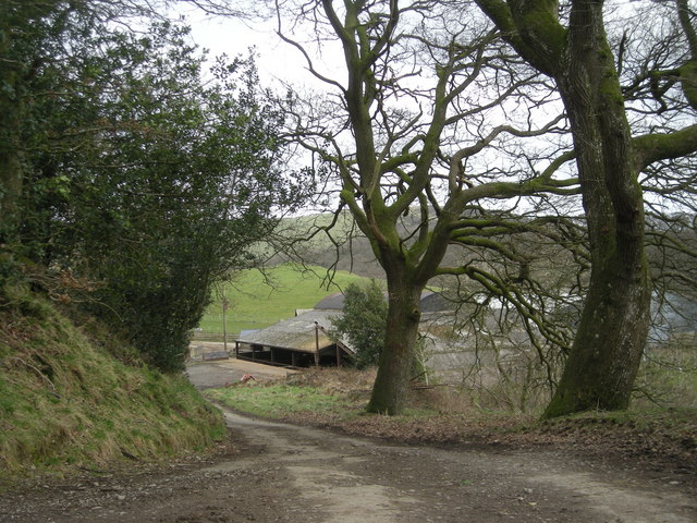 File:Graig and the lane - geograph.org.uk - 705703.jpg