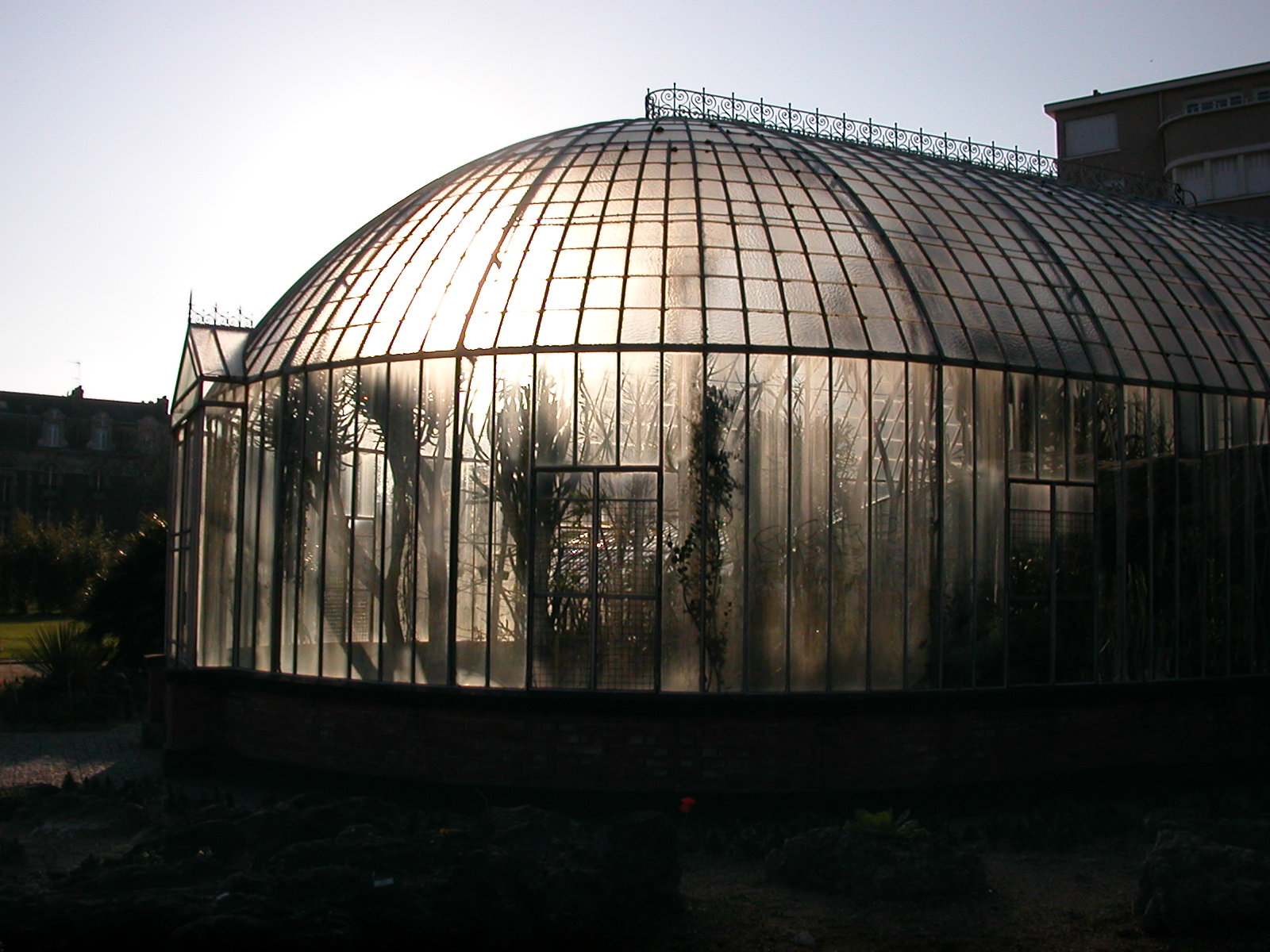 Fichier:Jardin des Plantes Nantes 15032007.jpg — Wikipédia