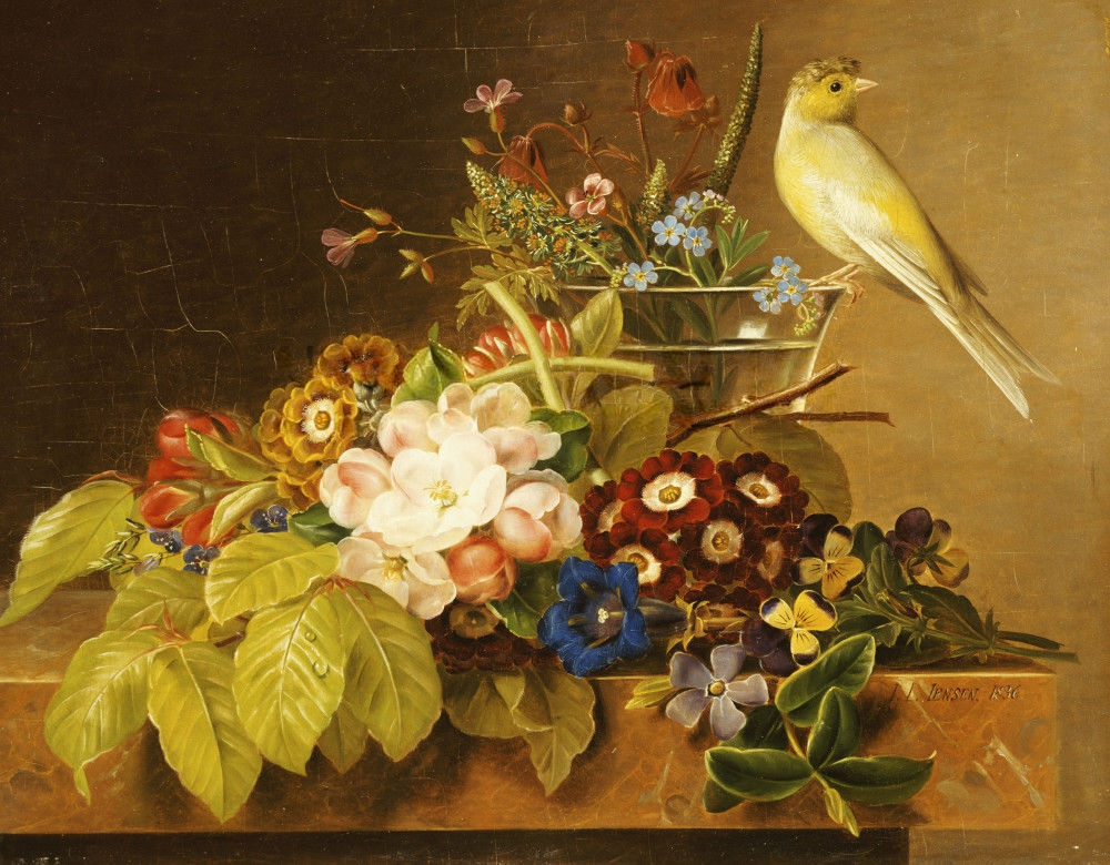 Johan Laurentz Jensen - Sweet William, Forget Me Not, Convulvus and a Canary on a Ledge (16436217636).jpg