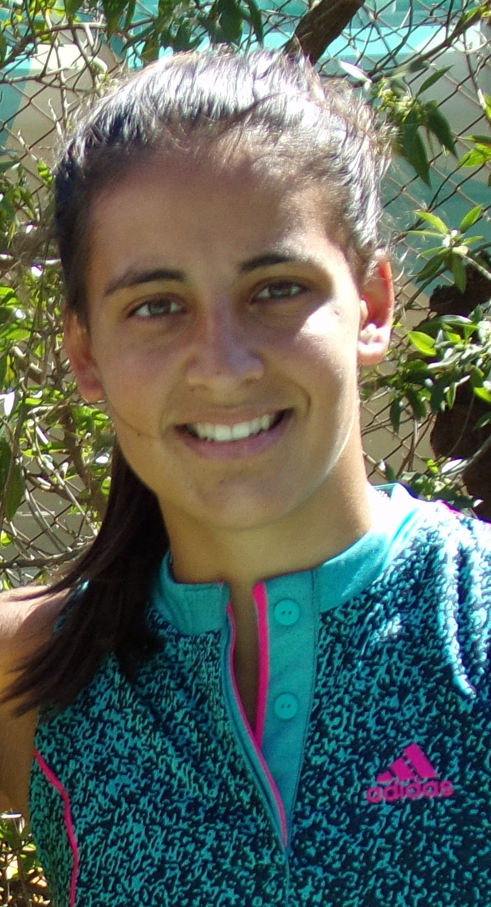 María Lourdes Carlé - Wikipedia