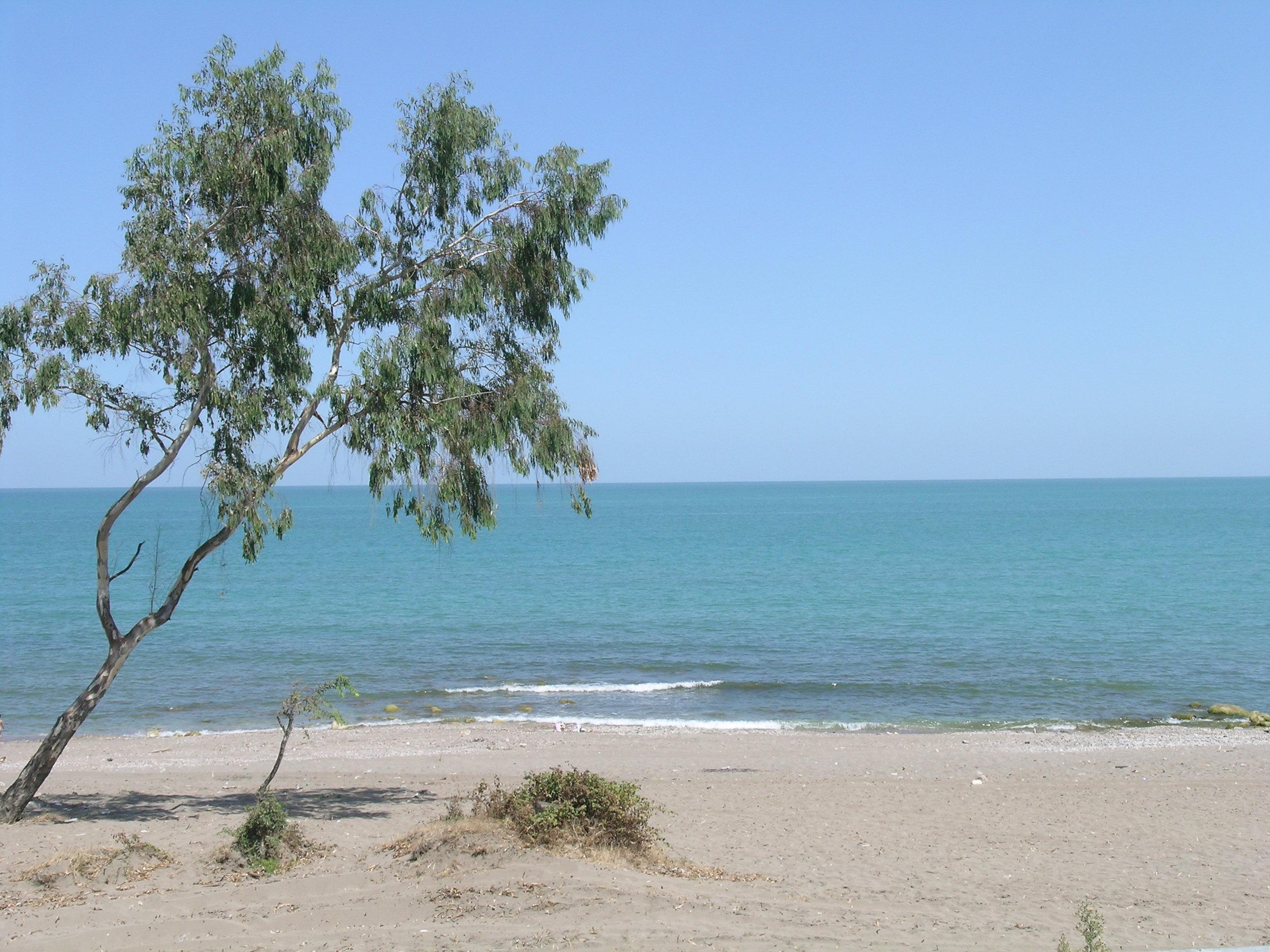 file:mazandaran sea beach - wikimedia commons