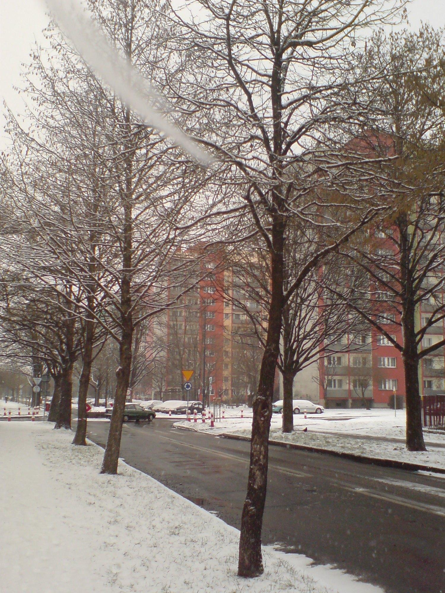Ulica Juliusza Słowackiego w Raciborzu