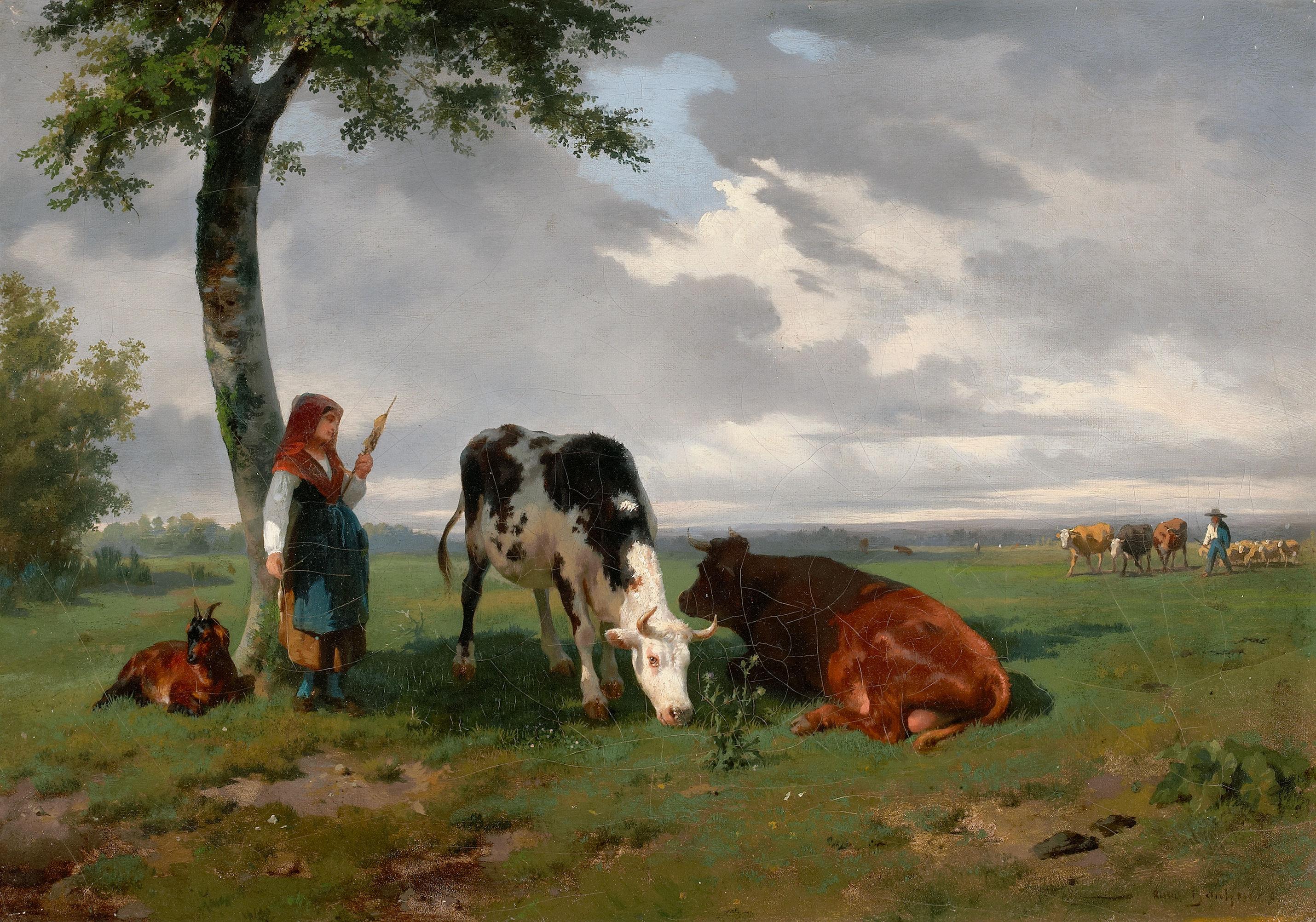 Картинки коров