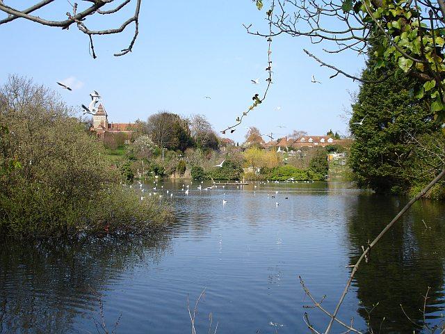 Stonebridge Pond - geograph.org.uk - 398021
