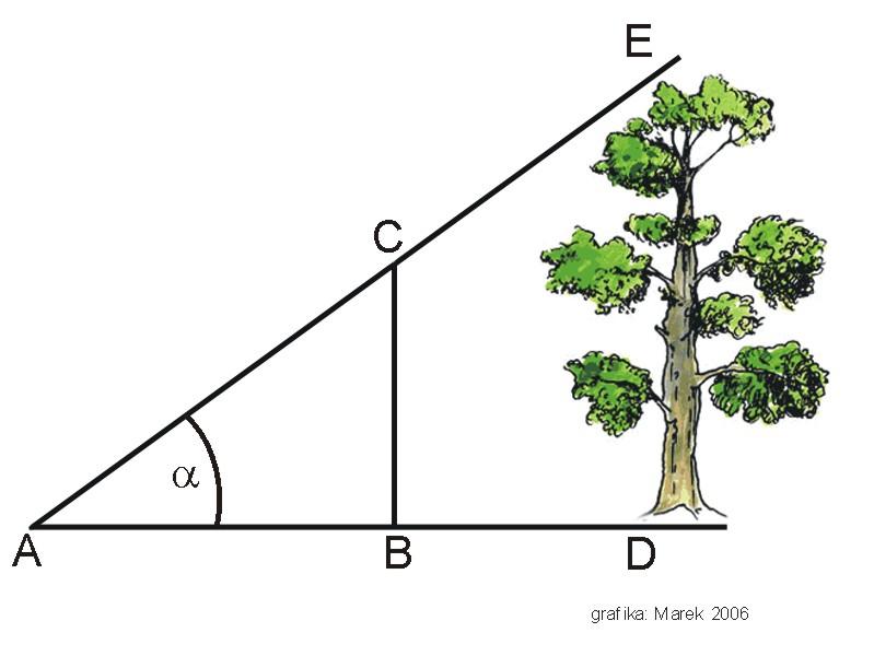 3 triangulation in research pdf