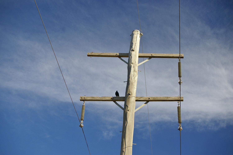 File:Two armed power pole 1.jpg - Wikimedia Commons