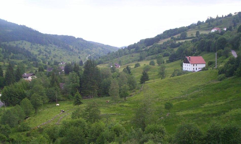 Vallée du Chajoux dans les Vosges