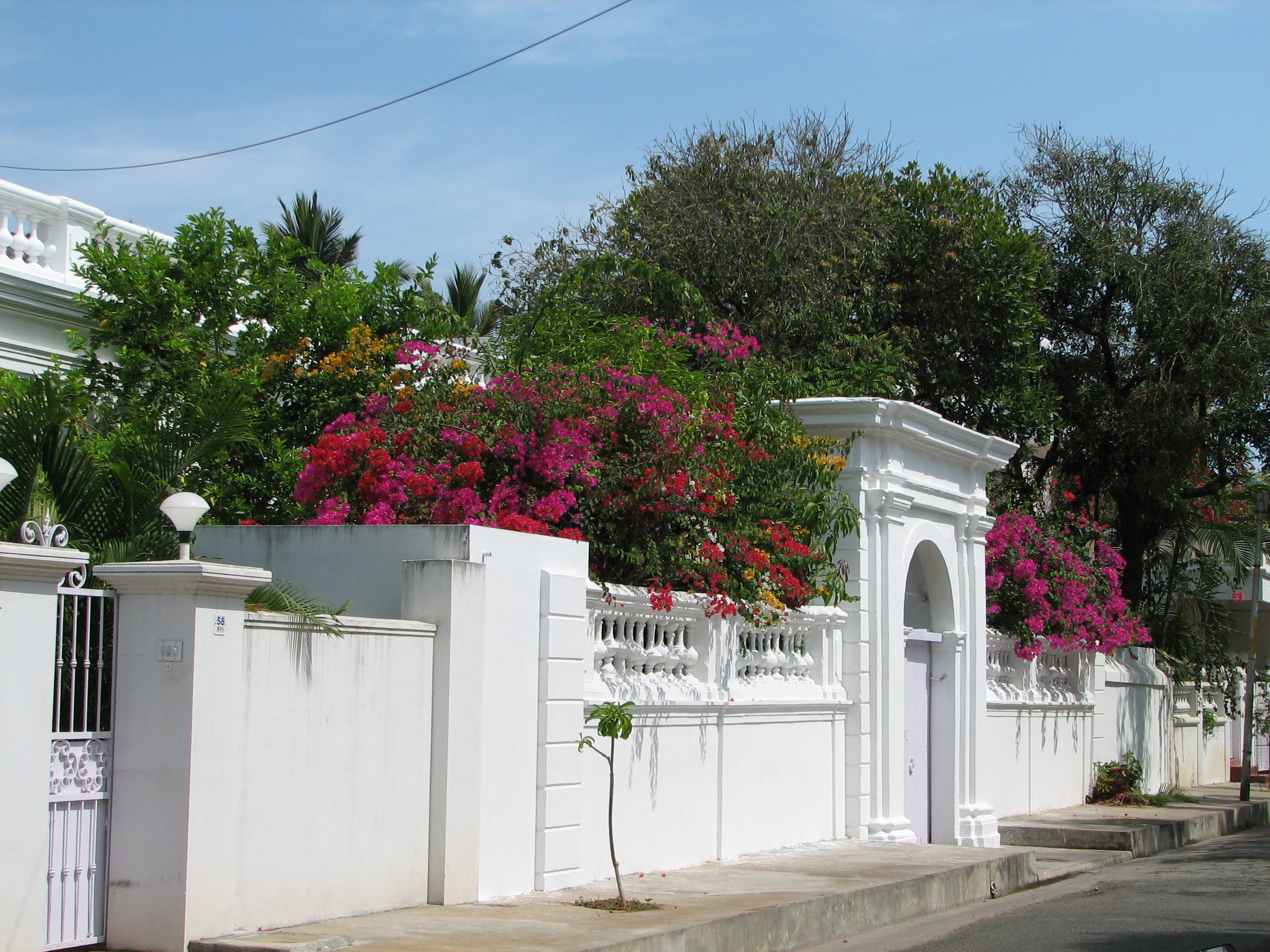 Archivo Vibrant Flowers French Architecture Pondicherry W