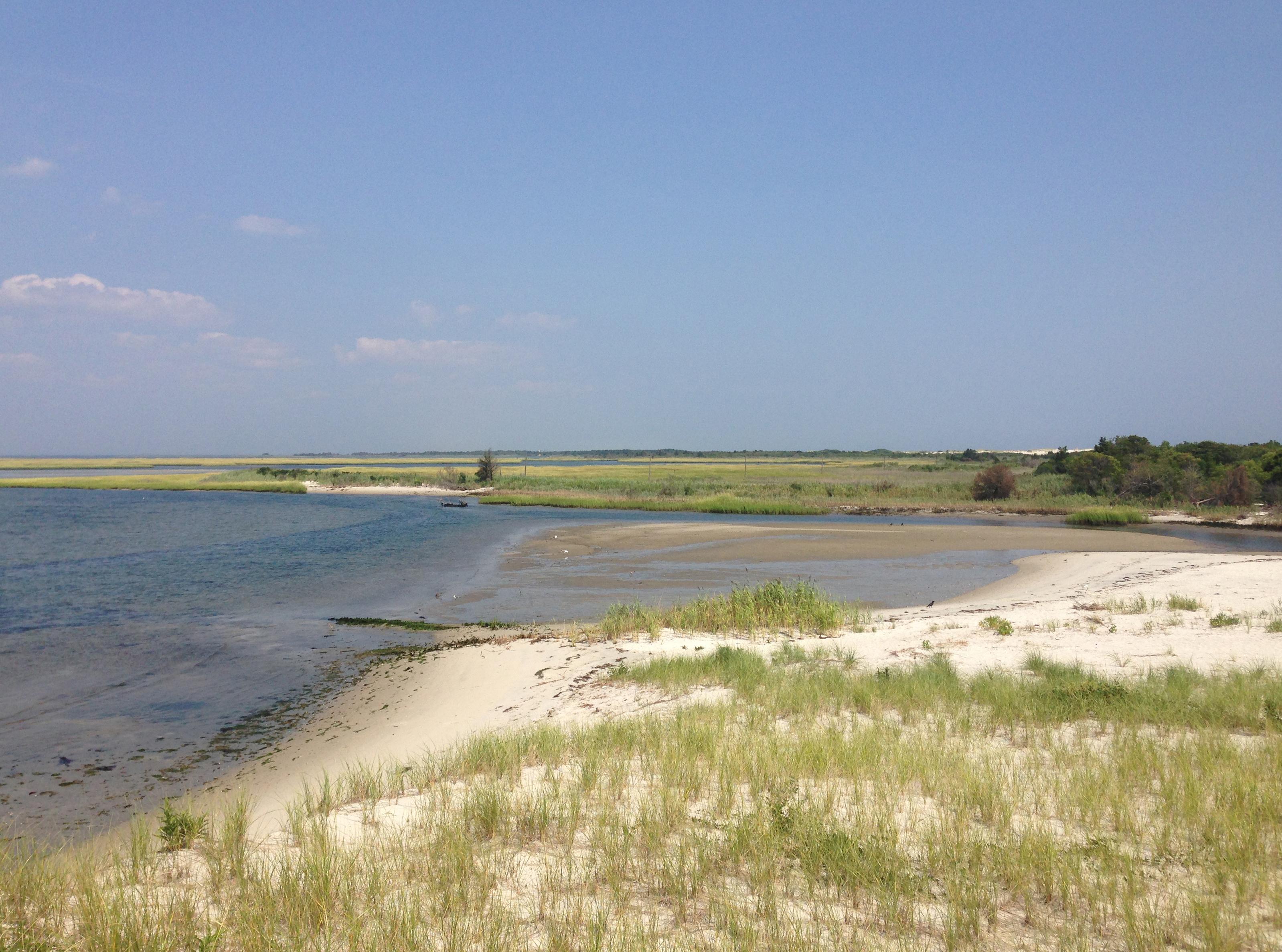 Little Talbot Island Beach