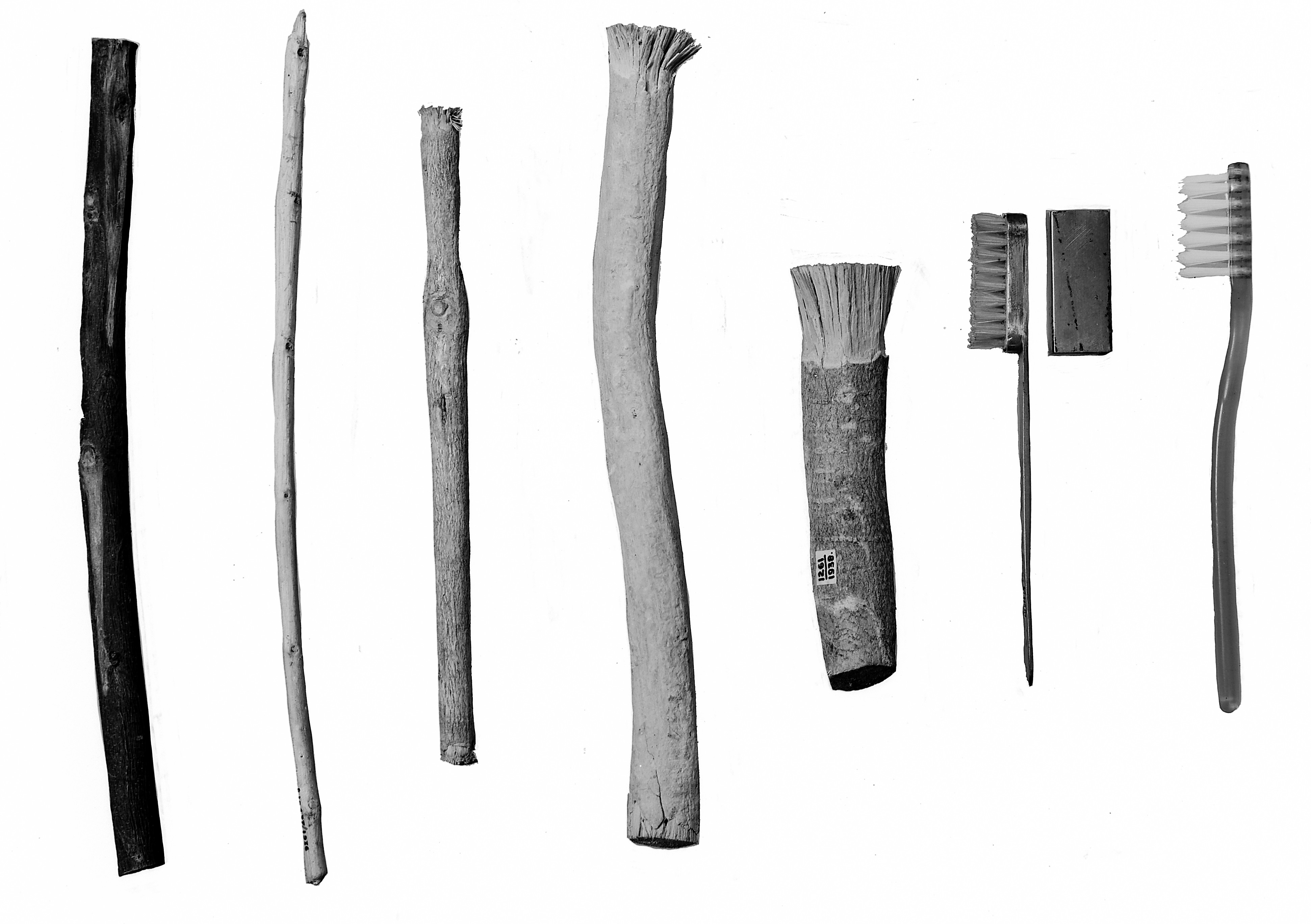 Historia de los Cepillos | Cepillos Dentales