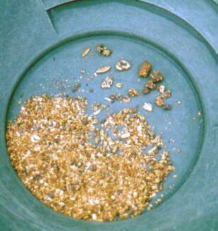 Alaska Gold in pan