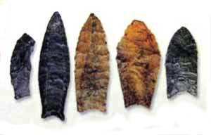 Examples of Clovis points