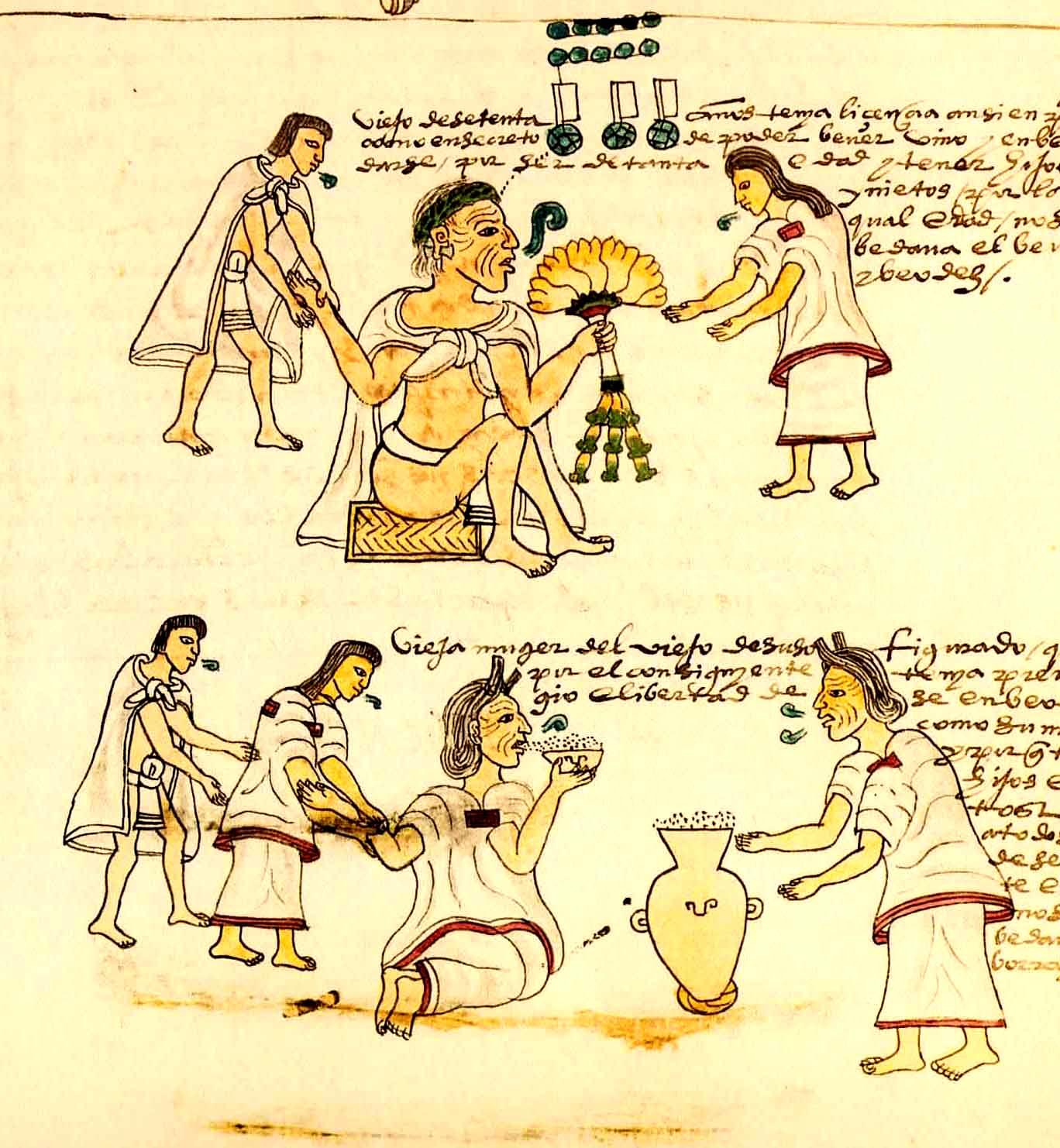 Aztec farming tools aztec cuisine wikipedia