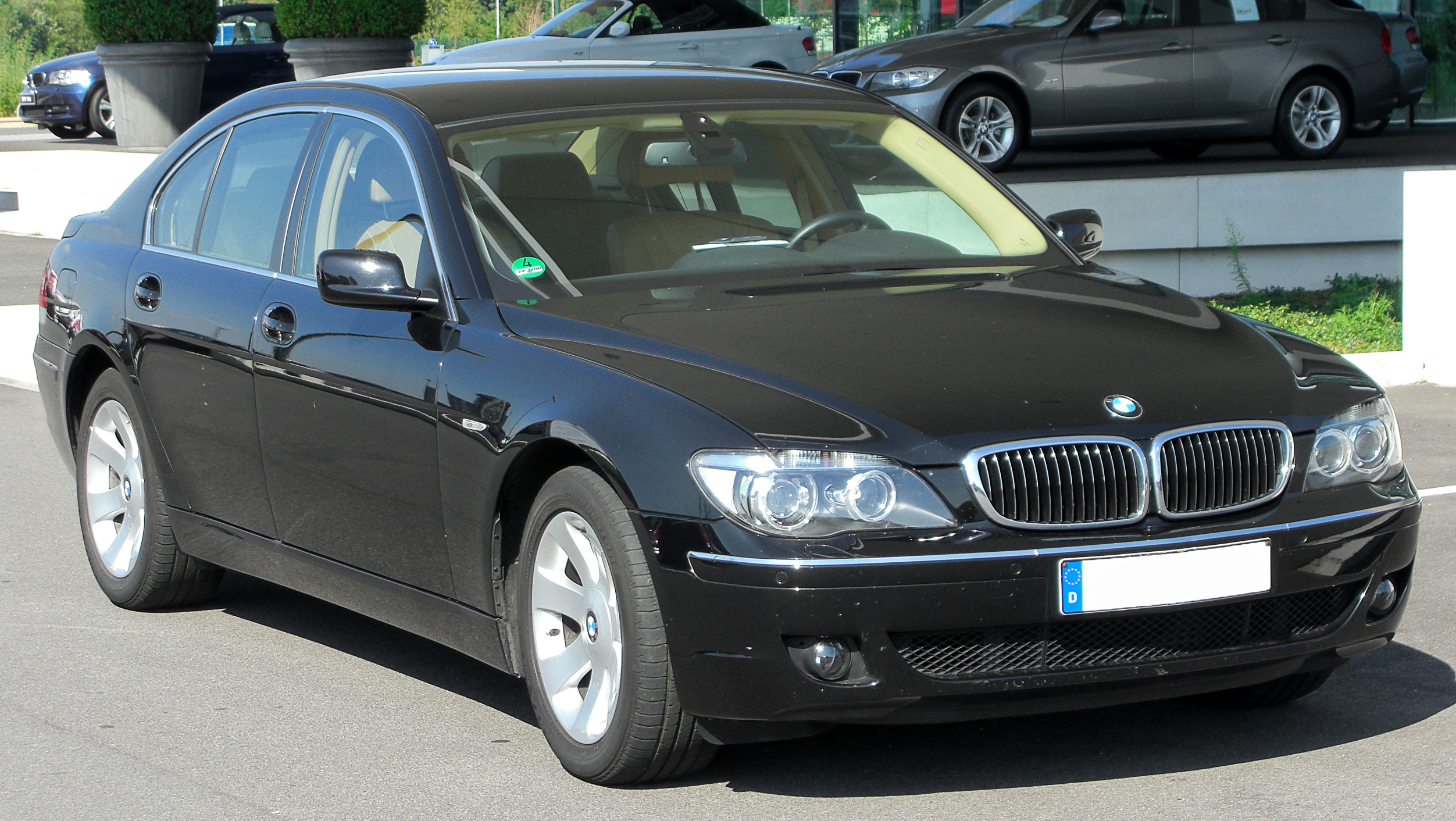 2005 bmw 730d e65 related infomation specifications. Black Bedroom Furniture Sets. Home Design Ideas