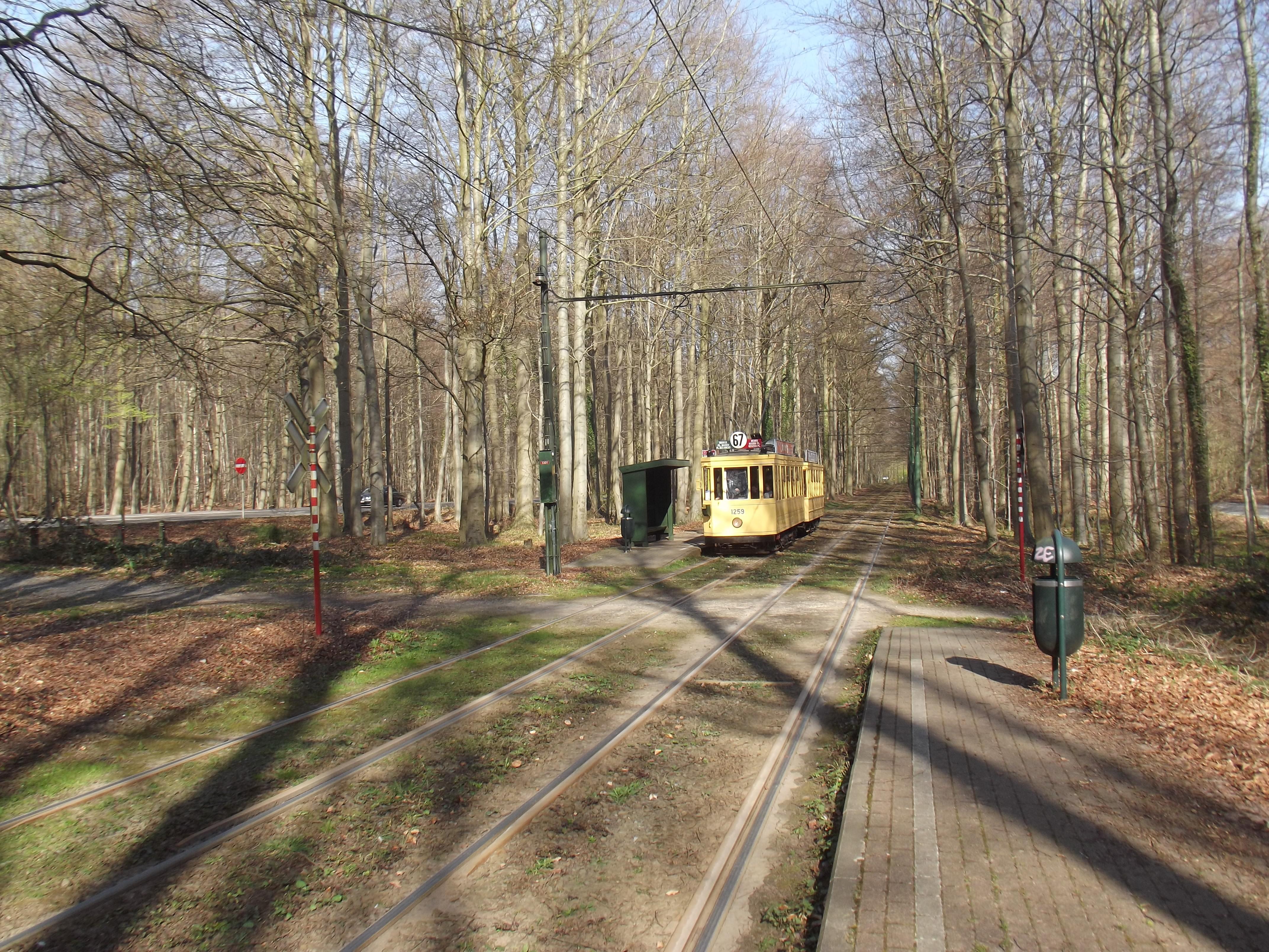 File:Brussels tram Tervuren wood 1259.jpg