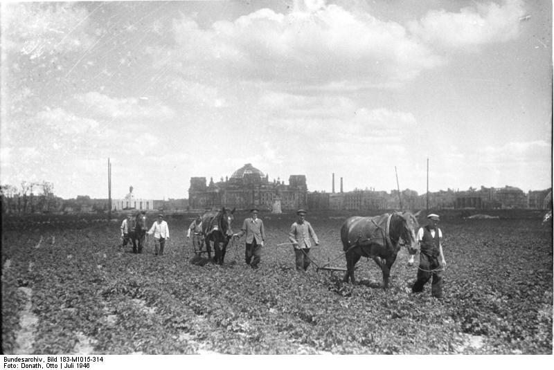Bundesarchiv Bild 183-M1015-314, Berlin, baumloser Tiergarten.jpg