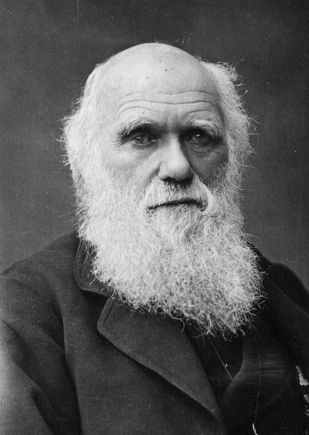 Image of Charles Darwin from Wikidata