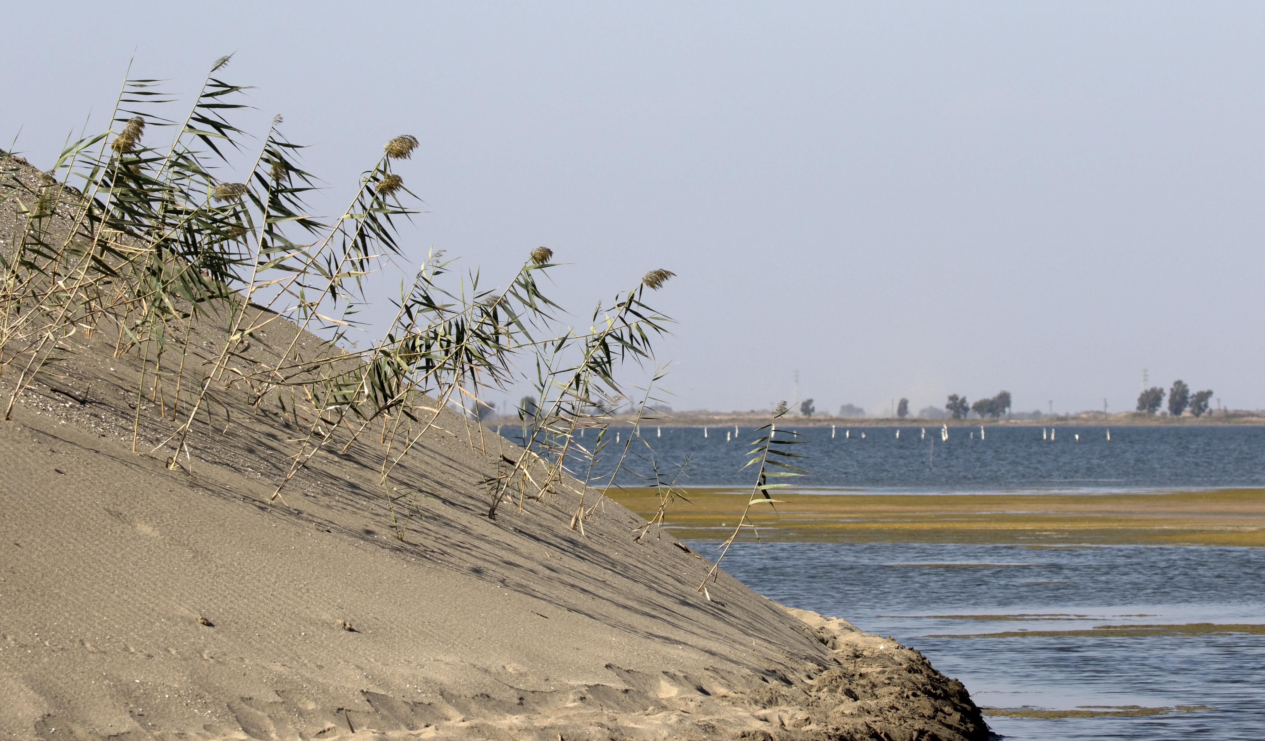 Tuzla Gölü (Karataş) - Vikipedi