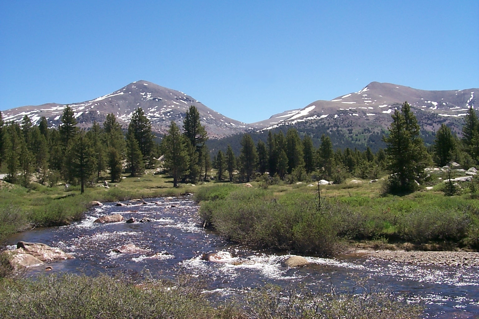 Dana Meadows in Yosemite, showing the headwate...