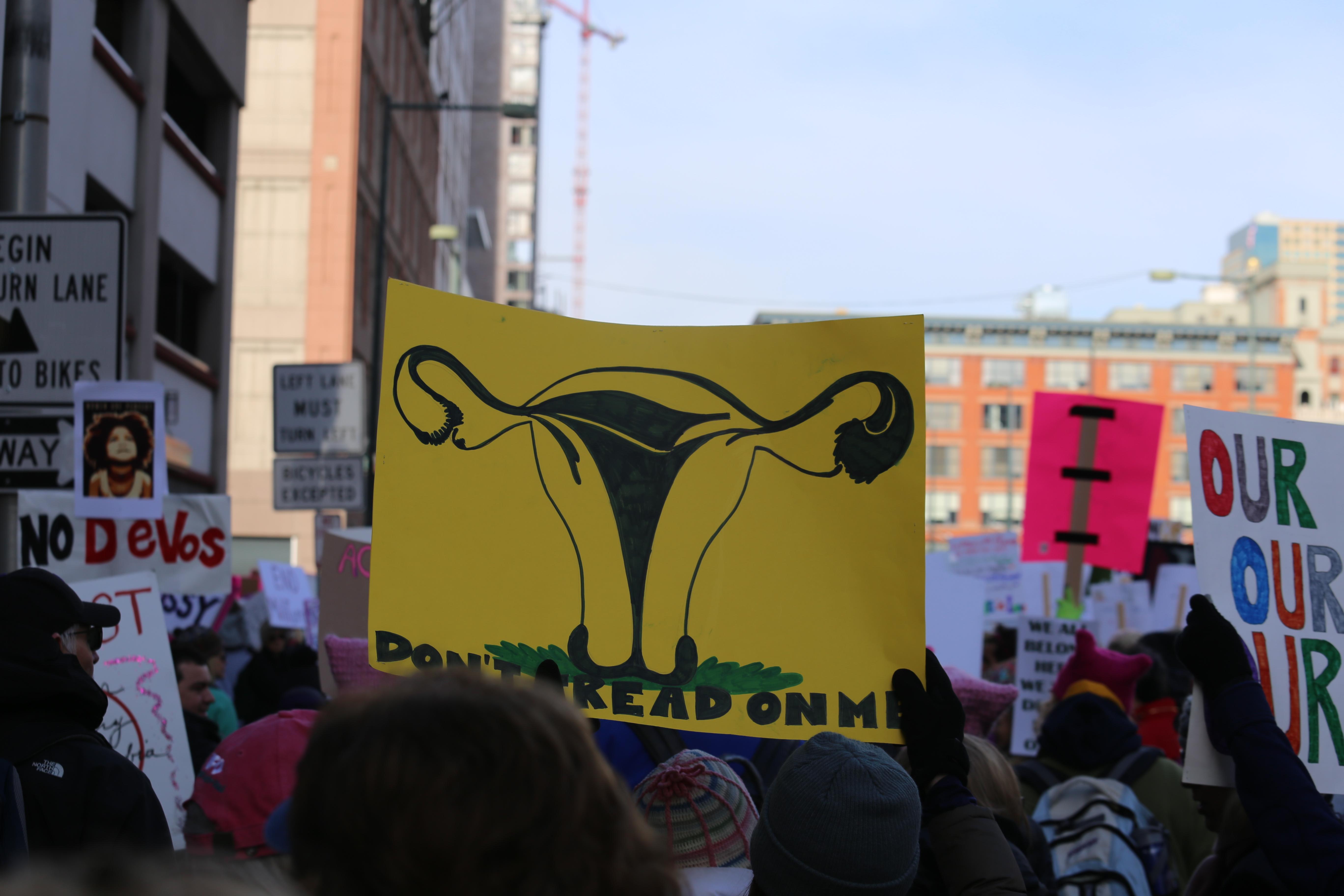 File:Denver Women\'s March 2017 Democracy in Action (31638460273).jpg ...