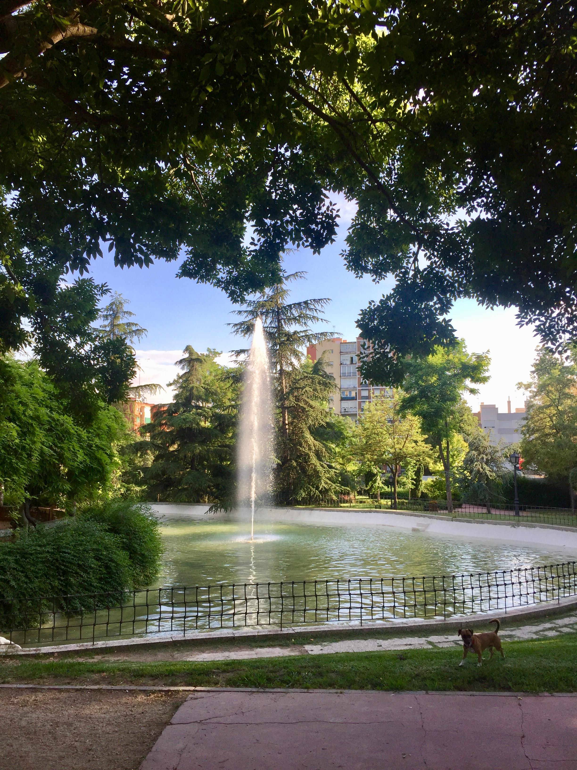 File estanque en el parque de la bombilla madrid espa a for Parques de madrid espana