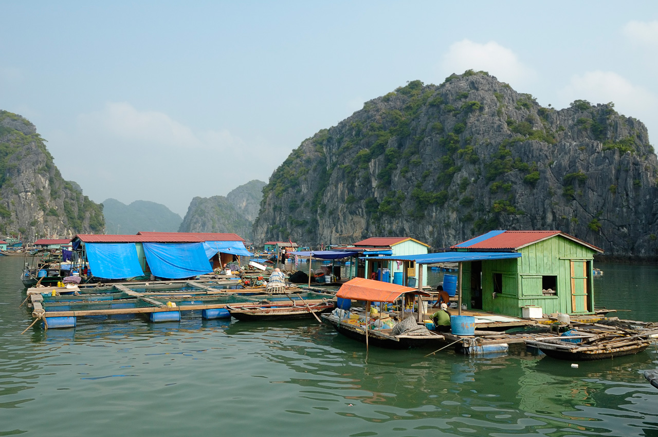 Description FishingVillage HaLongBay Vietnam (pixinn.net).jpg