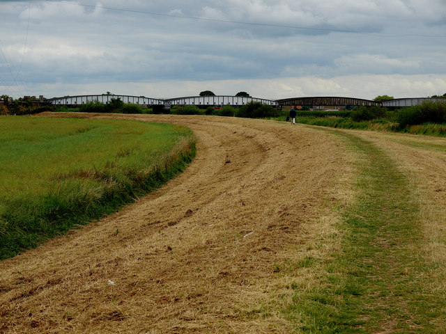 Footpath next to the River Ouse - geograph.org.uk - 1391151