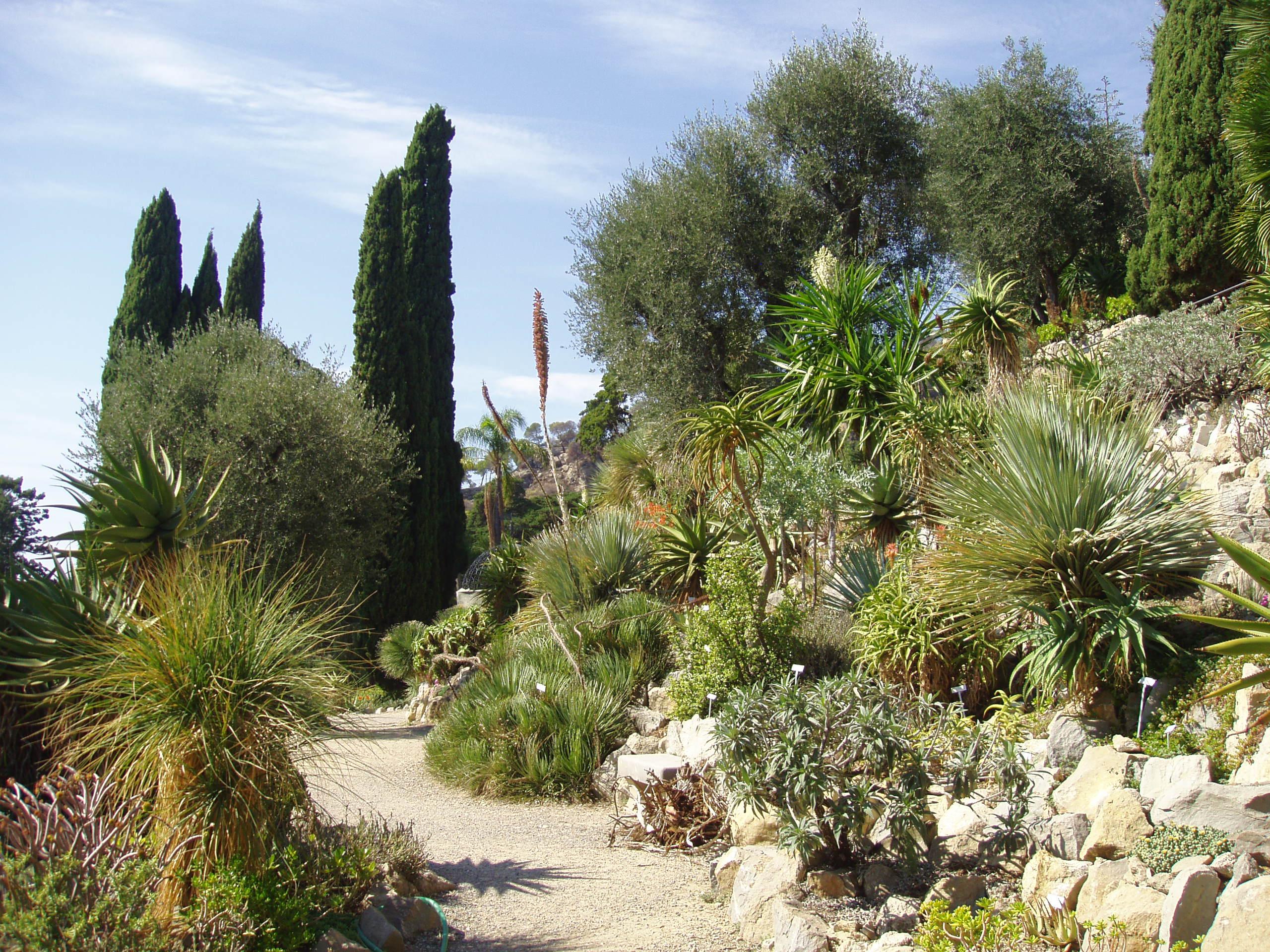 file giardini botanici hanbury general view jpg