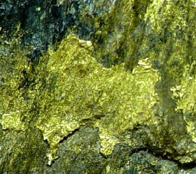 Gold specimen, near Johannesburg, South Africa. Rob Lavinsky/iRocks.com Photo on Wikimedia Commons