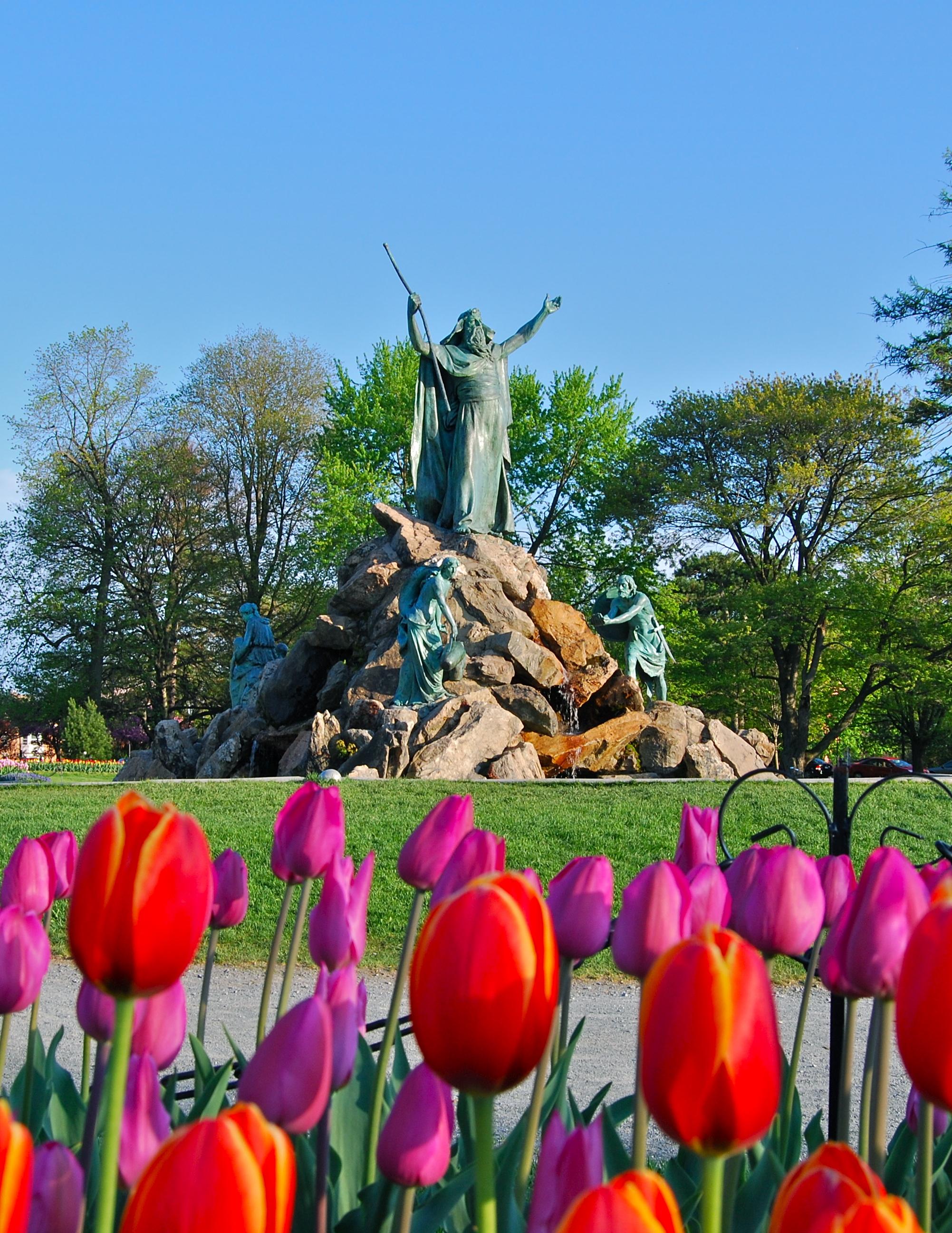Albany Tulip Festival 2020.Freihofer S Run For Women Wikipedia
