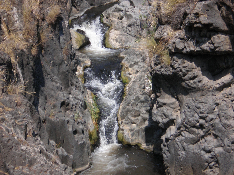 Meshushim , activites dans le Golan, baignade en riviere, randonnée dans le nord, coupons de réduction