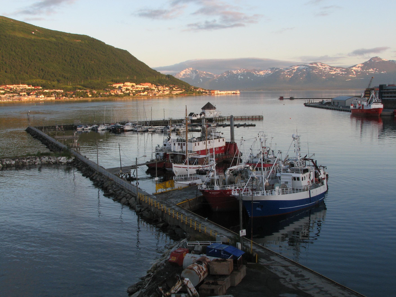 date norge Tromsø
