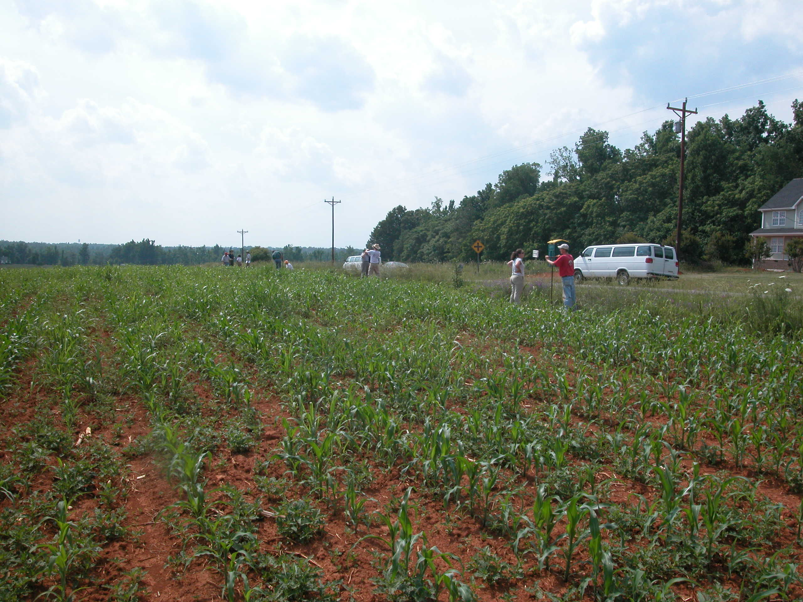 File nc red clay soil wikimedia commons for South carolina soil