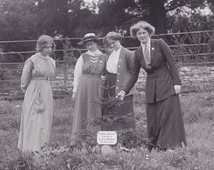 Charlotte 'Charlie' Marsh planting a tree with Annie Kenney, Mary Blathwayt and Laura Ainsworth
