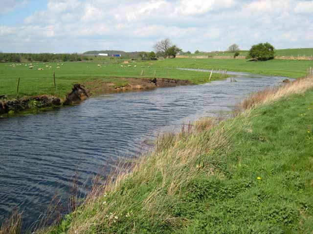 Ponded stream near Bishop Middleham - geograph.org.uk - 422460