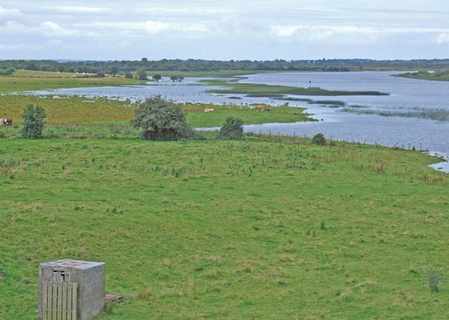 File:River Shannon flood meadows - geograph.org.uk - 1349096.jpg
