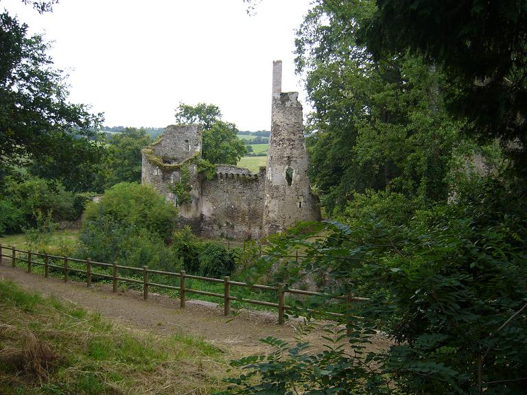 Ruines du château de Joachim du Bellay.JPG