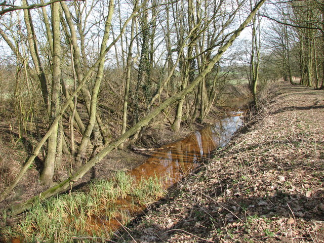 Rusty water in the River Waveney - geograph.org.uk - 1770324