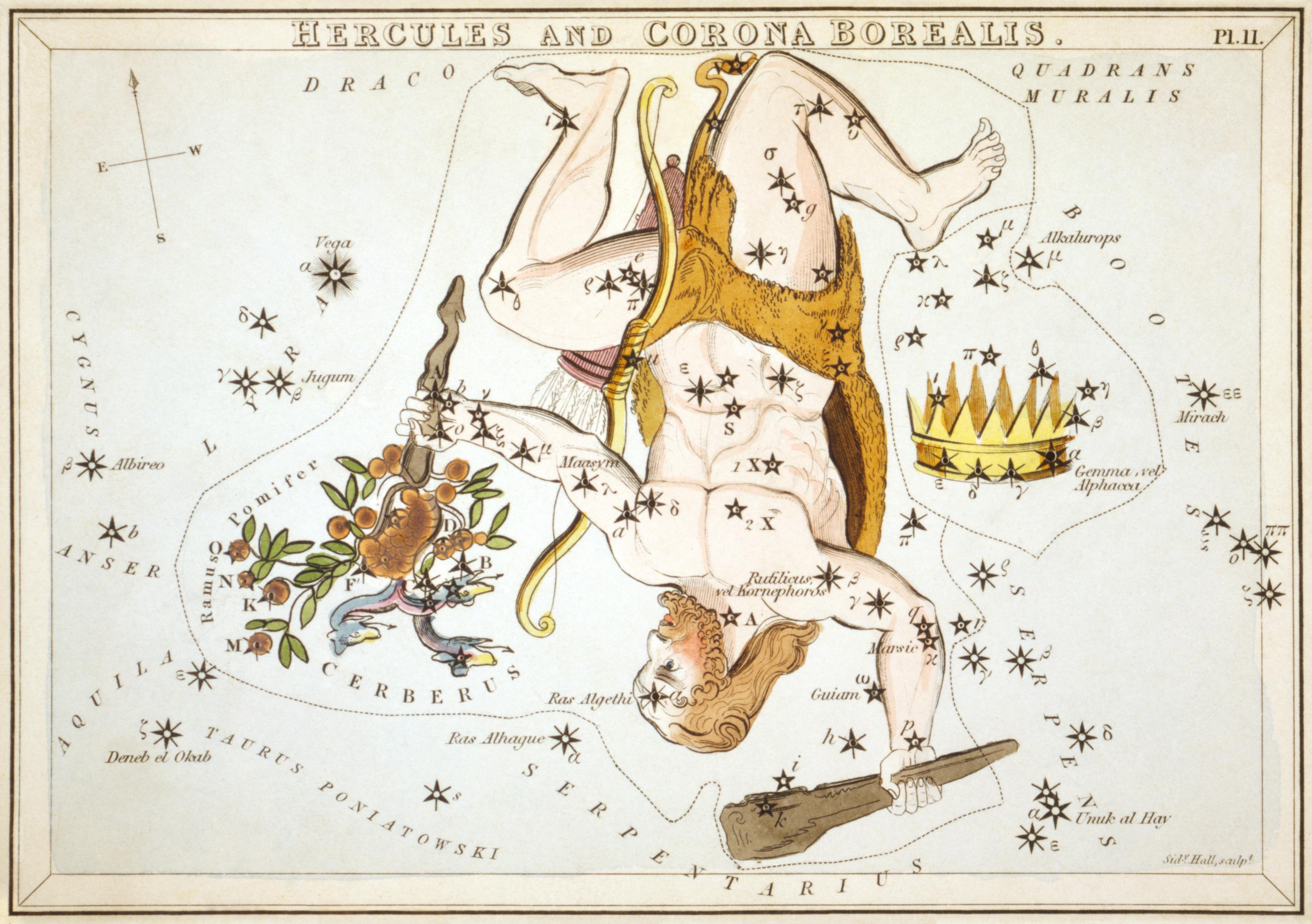 Resultado de imagen de constellation hercules printable